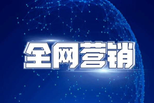 专业SEO网络推广